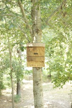 The Bat House: a Green, Energy Efficient Insect Repellant: 7 Steps (with Pictures) Solar House Numbers, Bat Box, Bug Zapper, Insect Repellent, Garden Projects, Garden Ideas, Backyard Ideas, Wood Projects, Energy Efficiency