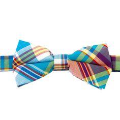 Bloomington Bone Bow Tie