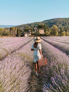 Luberon Provence, Provence France, La Route Napoleon, Formations Rocheuses, Destinations, Lavender Cottage, Blue Lingerie, Travel Goals, France Travel