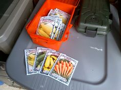 Starting a seed bank…….