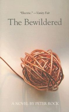 The Bewildered by Peter Rock, http://www.amazon.com/dp/159692179X/ref=cm_sw_r_pi_dp_fxvfqb13VXXKS