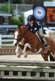 Devon horse show. Cute little jumper doing big things!! Rolligwood's Knee Deep and Zayna Rizvi.