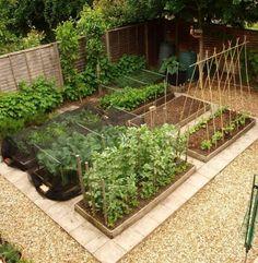pomysły ogród warzywny – zrzut ekranu