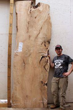 4014x5 Maple Slab Kiln Dried Sanded Edges