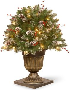 """National Tree GLM1-300-26P 26"""" Glittery Mountain Spruce Porch Bush with White Edged Cones, Red Berries in Dark Bronze Pot with 50 Clear Lights"""