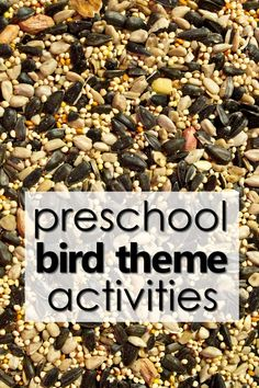 Plan your bird theme preschool activities with this helpful planning guide full of printable preschool lesson plans, bird activities, nonfiction videos, free printables and more for planning a bird theme study for kids. Preschool At Home, Preschool Themes, Preschool Science, Preschool Lessons, Preschool Activities, Bird Crafts Preschool, Preschool Projects, Lesson Plans For Toddlers, Kindergarten Lesson Plans