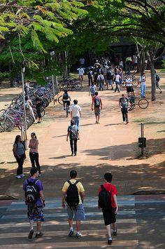 Campus Unicamp. Foto: Scarpinetti/Unicamp   Flickr - Photo Sharing!