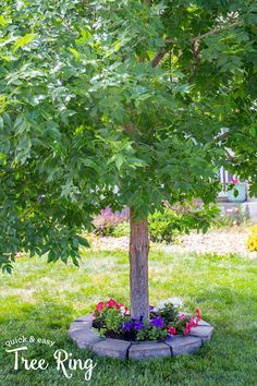 Quick and Easy Tree Ring- under 30 minutes to a gorgeous yard update!