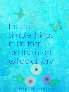 Simple things are extraordinary.   #simplethings #gratitude Visit us at: www.GratitudeHabitat.com