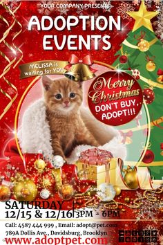 Christmas Rescue Dog Graphics 2021 250 Lost Pet And Pet Adoption Flyers Ideas In 2021 Pet Adoption Losing A Pet Adoption
