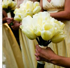Pale yellow tulips, the same flowers used in some of the centerpieces, were the only blooms in the bouquets. The simple grouping worked well with the patterned bridesmaid dresses.