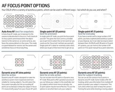 Autofocus point options: what subjects should each be used with?