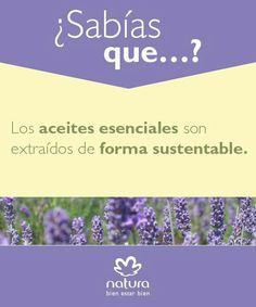 Natura Natura Cosmetics, Belleza Natural, Tips, Nature, How To Make, Herbs, Amor, Love My Job, Siempre Contigo