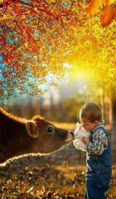 Animals love each other. Animals For Kids, Cute Baby Animals, Farm Animals, Animals And Pets, Funny Animals, Beautiful Creatures, Animals Beautiful, Children Photography, Nature Photography