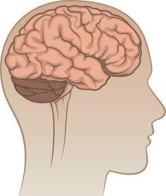 Cerebellum Injury Claims