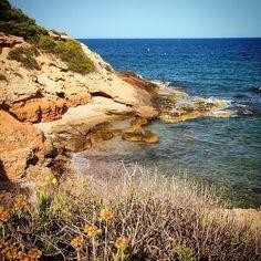 #ametllademar #ametllamar #terresdelebre #tarragona #catalunya #catalogne #cataluña #catalonia #pesca #fishing #pêche #platja #playa #plage #beach #estiu #verano #été #summer #sun #vacances #vacaciones #holiday #traveling #viajes #travel #visit #eatheword #vamosdeviaje #voyage #escapadas #experiences #traveller #food #gastronomia #gastronomy # happyholidays #mediterrani #mediterraneo #mediterranean #visiting #vacation #trip #tourism #tourist turismeametllademar's photo