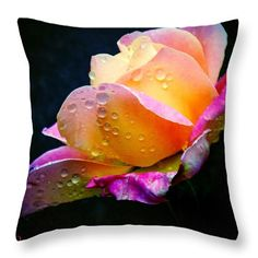"Last Lady Diana Rose of the Season 16"" x 16"" Throw Pillow by Anna Porter.  Multiple sizes available."