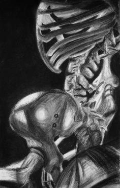 skeleton still life - Google Search