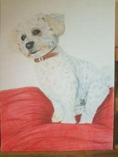 Coloured Pencils, Teddy Bear, Portrait, Artwork, Animals, Color, Art Work, Animales, Colour