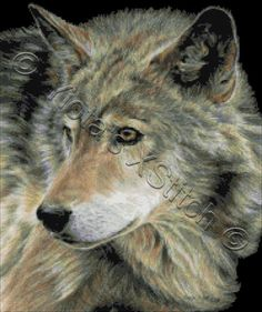 Curious eyes - wolf cross stitch kit | Yiotas XStitch