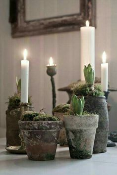 Candles in pots with moss christmas ~ ideas ~ ~ christmas ~ id .- Kaarsen in potten met mos christmas ~ ideas ~ ~ kerst ~ ideeën ~ kerst ideeë… Candles in pots with moss christmas ~ ideas ~ ~ christmas ~ ideas ~ christmas ideas 2018 deco Scandinavian Christmas, Rustic Christmas, Winter Christmas, Christmas Home, Christmas Wreaths, Merry Christmas, Xmas, Christmas Trends, Decoration Christmas