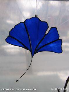 Blue Ginko