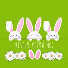 Wallpaper Whatsapp - Buona Pasqua Auguri, immagini e frasi - WhatsApp Web - Whatsappare Happy Easter, Easter Bunny, Ostern Wallpaper, Easter Illustration, Rabbit Vector, Easter Backgrounds, Diy Ostern, Easter Wishes, Easter Party
