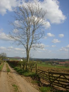 An April walk above the village of Earlston, looking east