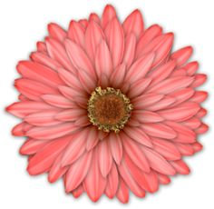 View album on Yandex. Flower Clipart, Art Clipart, Button Flowers, Big Flowers, Flowers Pics, Public Domain Clip Art, Floral Theme, Botanical Flowers, Illustrations