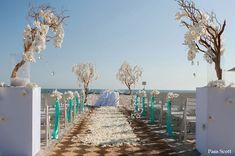 Beach wedding at the Hotel Del Coronado ~ Manzanita trees with orchids