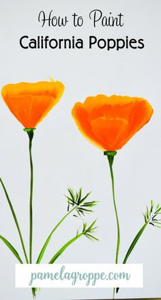 How to Paint California Poppies California poppies explode into bloom all over the county in Spring. They are so abundant in places that it looks like fields of orange and what a sight it can be. …