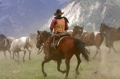 A wrangler at a Colorado outfitting business for sale rounds out horses to pasture after a day of guiding wilderness horseback rides. Ranch broker Gary Hubbell specializes in selling dude ranches and guest ranches.