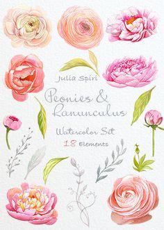 Watercolor Flowers Clipart, Peonies, Ranunculus, Wedding Invitation, Hand…