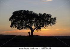 Man silhouette at sunset by Claudia Fernandes, via Shutterstock