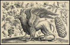 PERUSING THE PEGASI – PLINY'S HORSE-HEADED MYSTERY BIRDS | Where ...