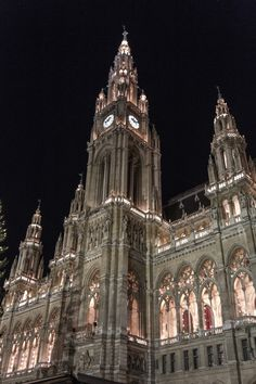 Vienna City Hall. I had the opportunity to go there a summer ago!