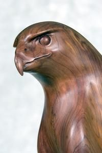 Wildlife Art - Sculptures in Wood