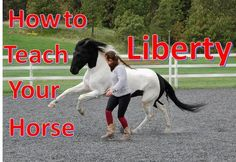 In this video I'll be showing how to teach your horse to do liberty with my 3 year old miniature horse Nemo. This is the first day that I worked with him and...