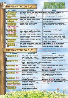 Ortografia języka polskiego 7 plansz Bullet Journal