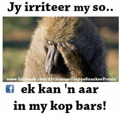 Short Jokes Funny, Best Funny Jokes, Funny Jokes To Tell, Quotes And Notes, Great Quotes, Funny Quotes, Funny Images, Funny Pictures, Funny Pics