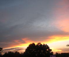 love my pink sky 2014