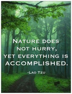 lao tzu quotes on nature: Nature does not hurry, yet everything is accomplished. EXCLUSIVE Lao Tzu Quotes That Will Make You Wiser - BayArt BayArt bayyartt Quotes lao tzu quotes Lao Tzu Quotes, Wisdom Quotes, Life Quotes, Taoism Quotes, Zen Quotes, Humble Quotes, Rumi Quotes, Meditation Quotes, Healing Meditation