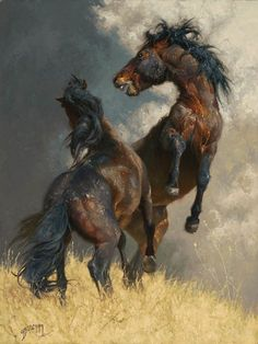 Artwork by Greg Beecham - The Wild and Rugged Onaqui, Pretty Horses, Beautiful Horses, Horse Artwork, West Art, Horse Drawings, Equine Art, Animal Paintings, Horse Paintings, Horse Pictures