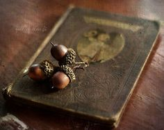antique book, old wood, and acorns.