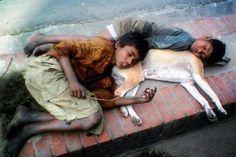 Bangladeshi street children sleep with their dog.