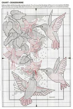 humming birds with fuchsia by dimensions 3/3