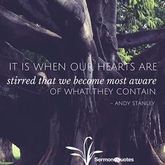 It is when our hearts are stirred that we become most aware of what they contain. - Andy Stanley