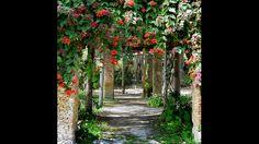 Fairchild Tropical Botanic Garden : Florida's Best Botanical Gardens : TravelChannel.com