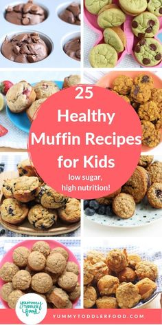 Toddler meals 56787645292045619 - Bake up the most delicious healthy muffins for baby, toddler, big kids AND mom and dad with the best recipes made with fruits, veggies, whole grains and low sugar! Source by yummytoddlerfood Healthy Muffins For Kids, Healthy Breakfast Muffins, Healthy Muffin Recipes, Healthy Kids, Baby Food Recipes, Healthy Recipes For Toddlers, Toddler Veggie Muffins, Healthy Toddler Breakfast, Fruit Recipes For Kids