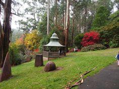 Alfred Nicholas Gardens - Autumn - Melbourne Mums Group